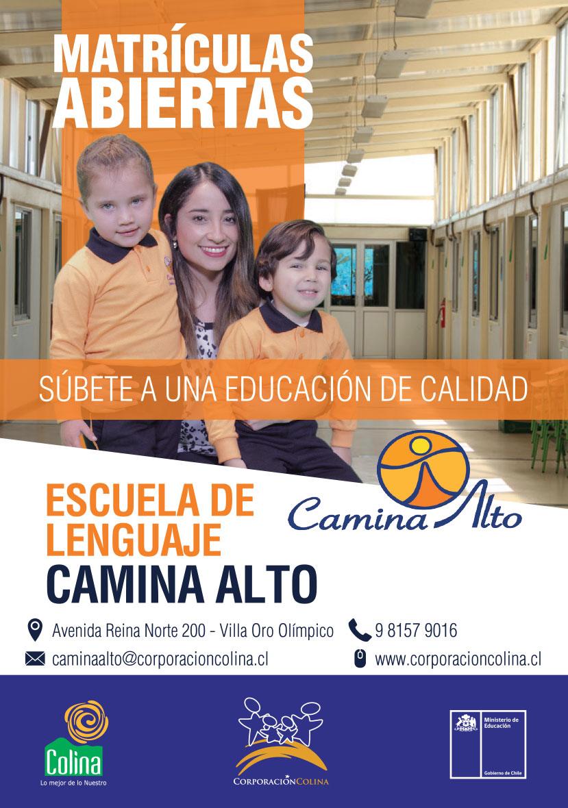 CAMINA-ALTO-volantes-colina-2018-1