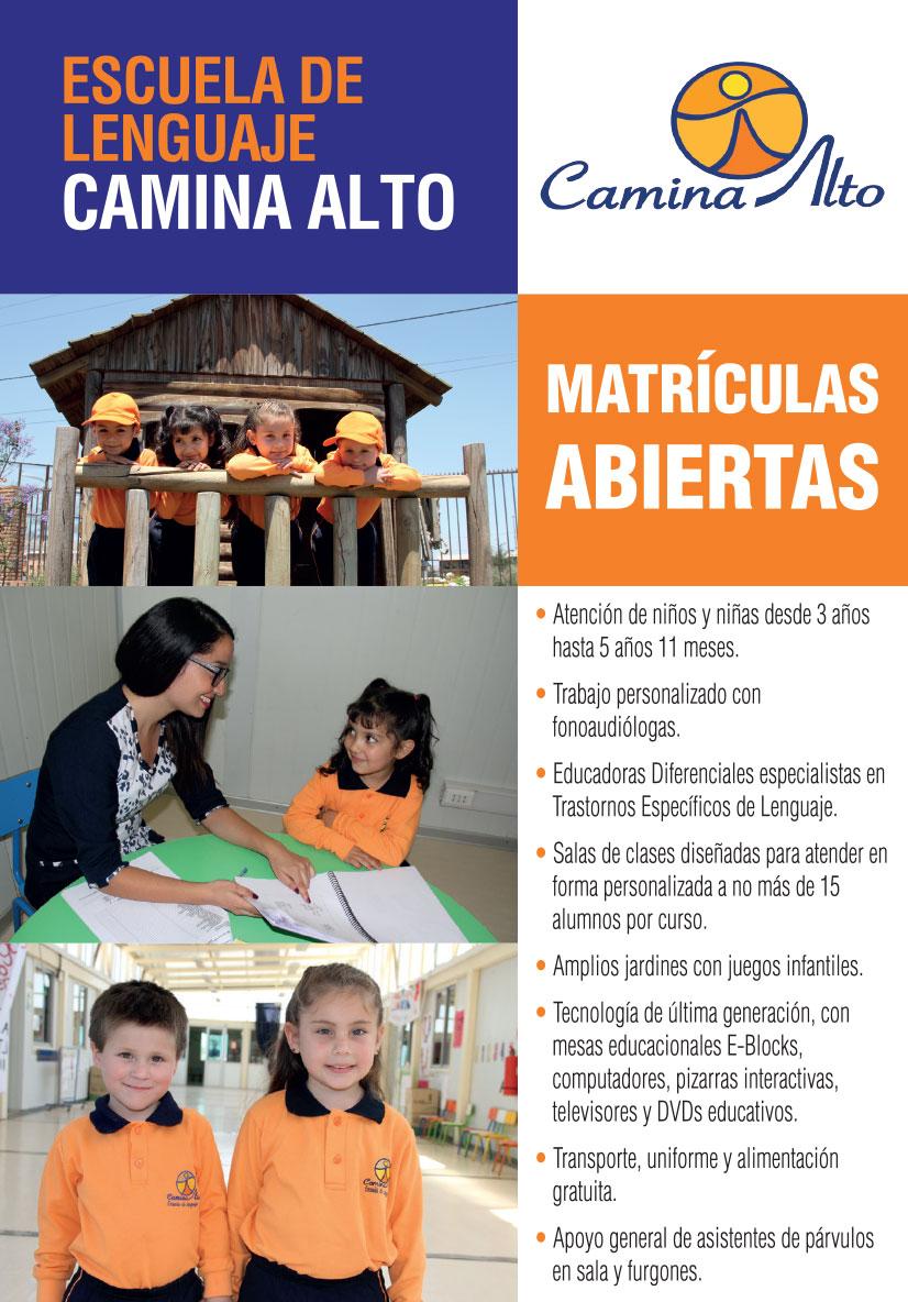 CAMINA-ALTO-volantes-colina-2018-2
