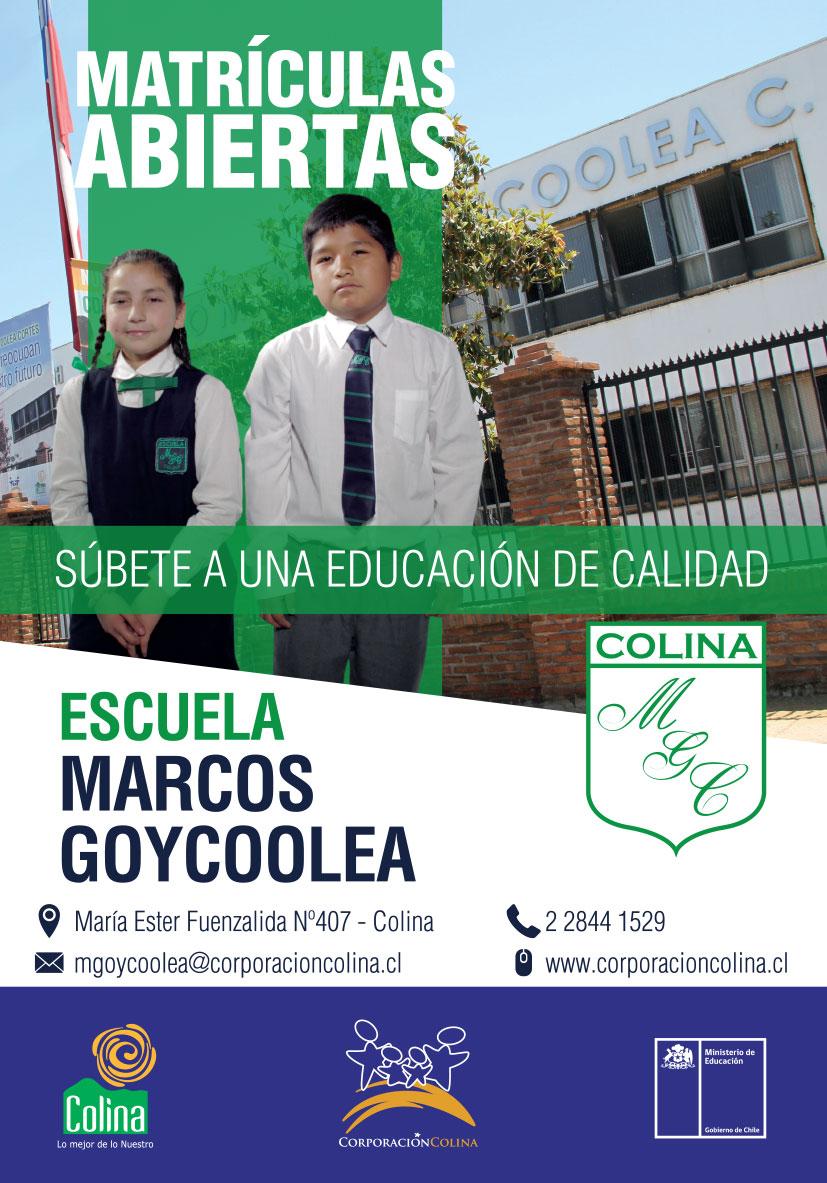 GOYCOOLEA-volantes-colina-2018-1