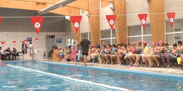 torneo-natacion